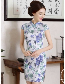 dress cheongsam D3653