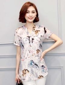 blouse import T3580