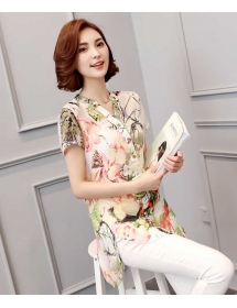 blouse import T3581