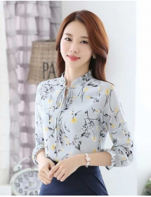blouse import T3686