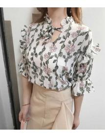 blouse import T3852